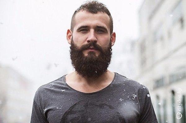 Борода и лысина – приметы самых желанных мужчин