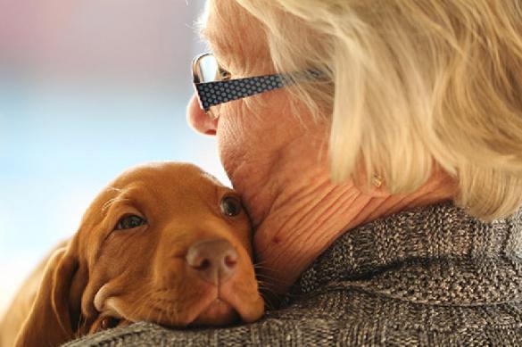 Собаки могут быть локаторами заболеваний