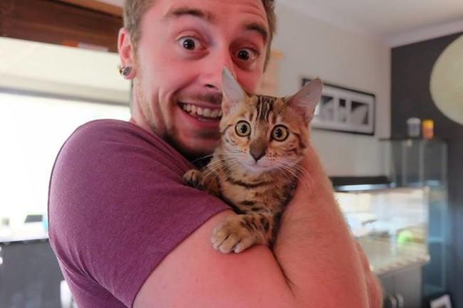 Кошки копируют хозяев