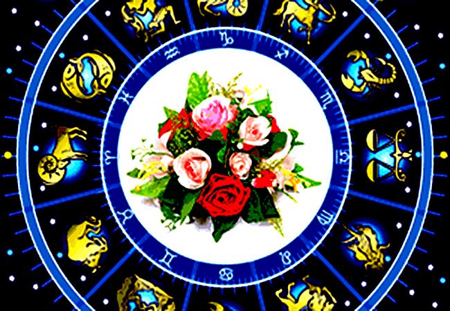 Какой цветок подходит вашему знаку Зодиака