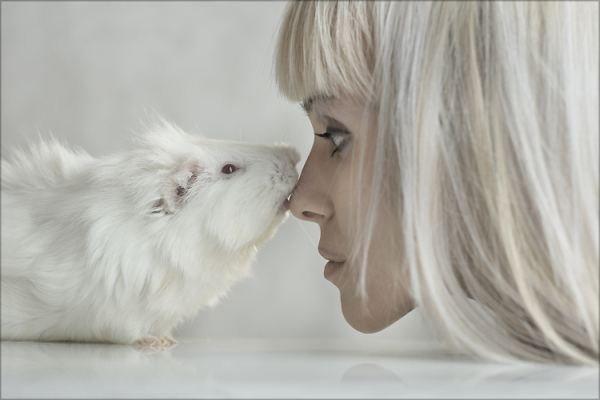 Перестаем быть серой мышью