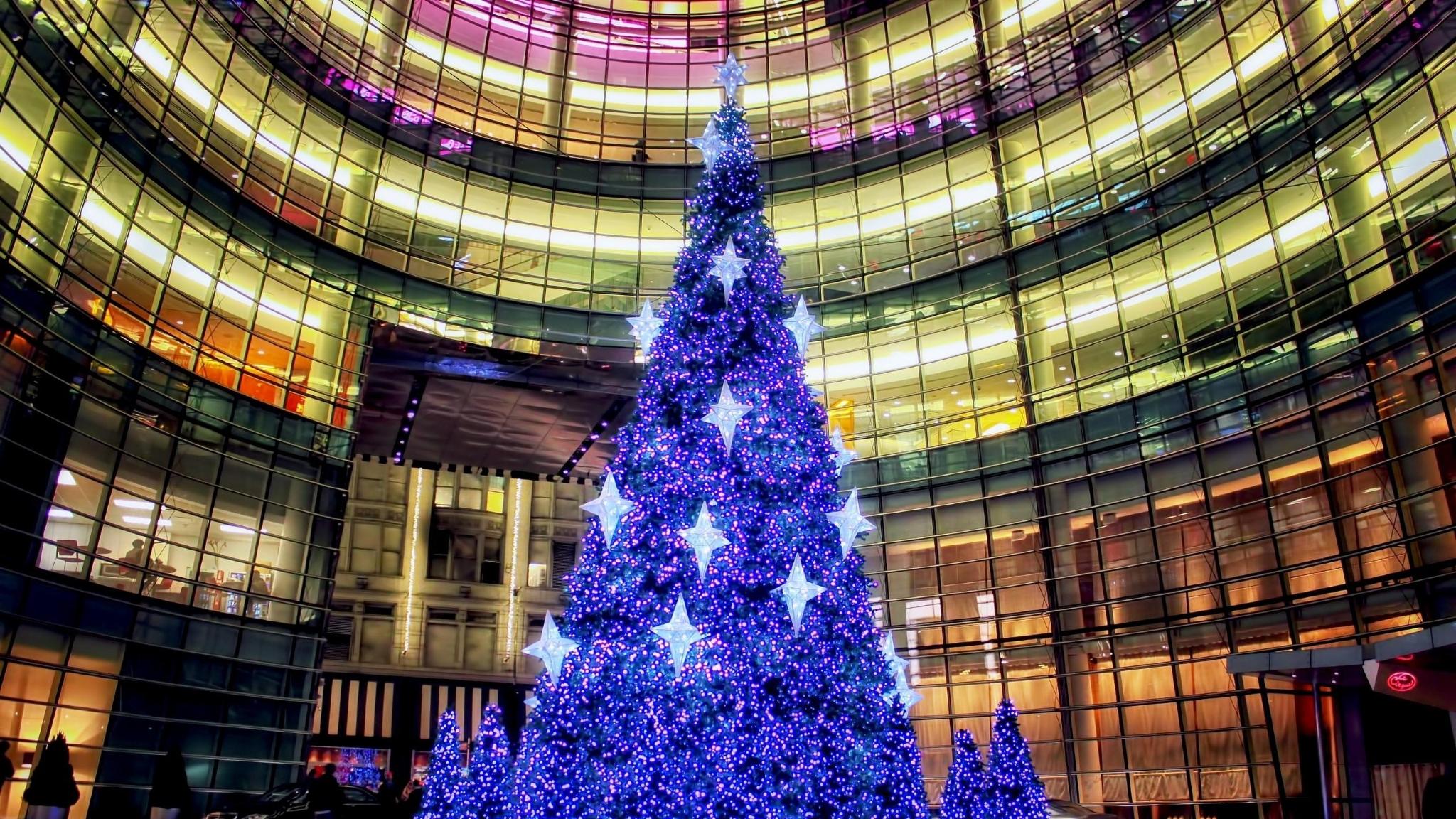 Скоро нас ждет синдром новогодней елки, которую нельзя держать в доме больше недели