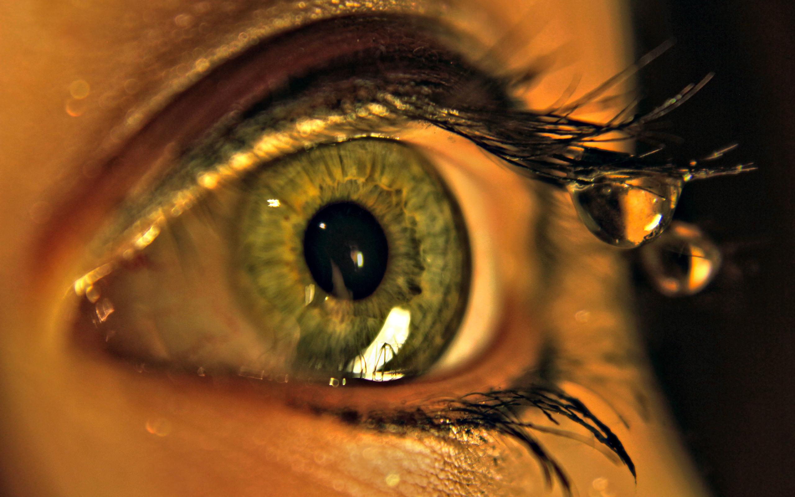 О силе внутреннего волнения можно судить по  размеру зрачка