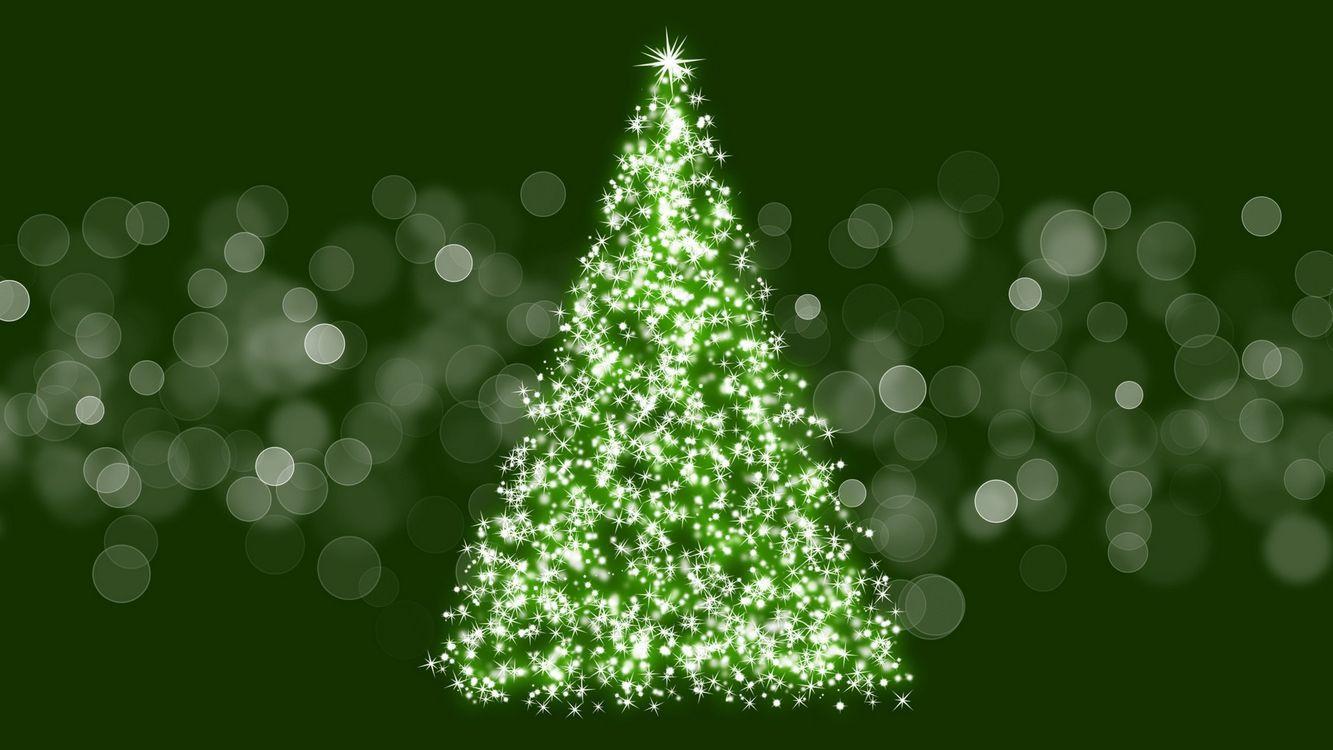 Маленькие хитрости при выборе новогодней ёлки для дома от Росстандарта