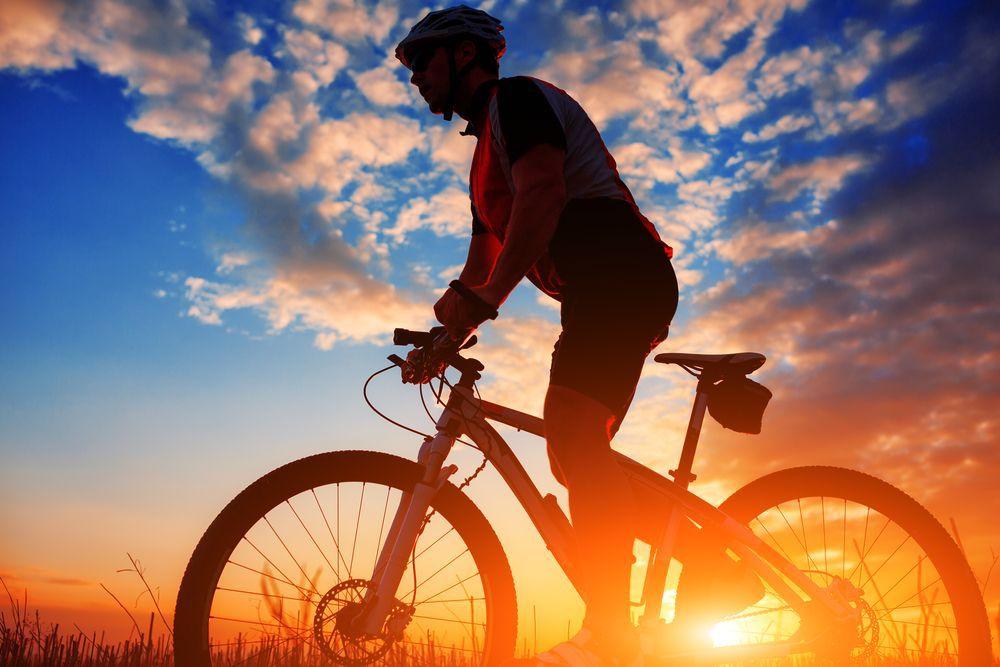Семья велосипедистки пожертвовала ее мозгом