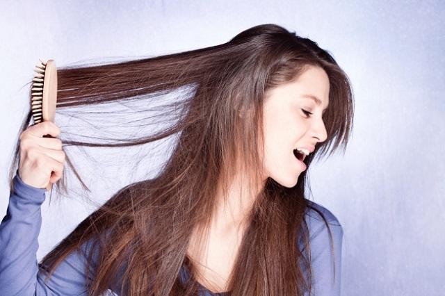 Здоровье волос зависит от... расчески. 14721.jpeg