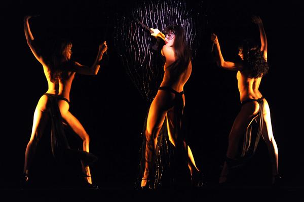 Эротическое шоу   Le Crazy Horse Paris