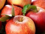 20 продуктов, которые активизируют сжигание жира
