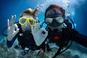Тайны океана для каждого туриста