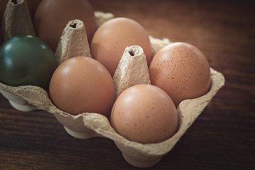 Яйца можно есть в любом количестве