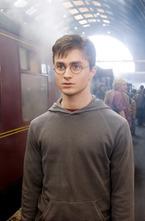 Исполнитель роли Гарри Поттера, британский актер Дэниел Рэдклифф,  озвучил вампира, который является своеобразной анимационной копией героя  вампирской саги «Сумерки».