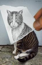 Бенджамин Гейне (Benjamin Heine) - бельгийский художник, создавший серию   изображений под названием  Карандаш vs Камера . Изображение сочетает в   себе фотографию и рисунок. Кто из них главнее – решать вам…